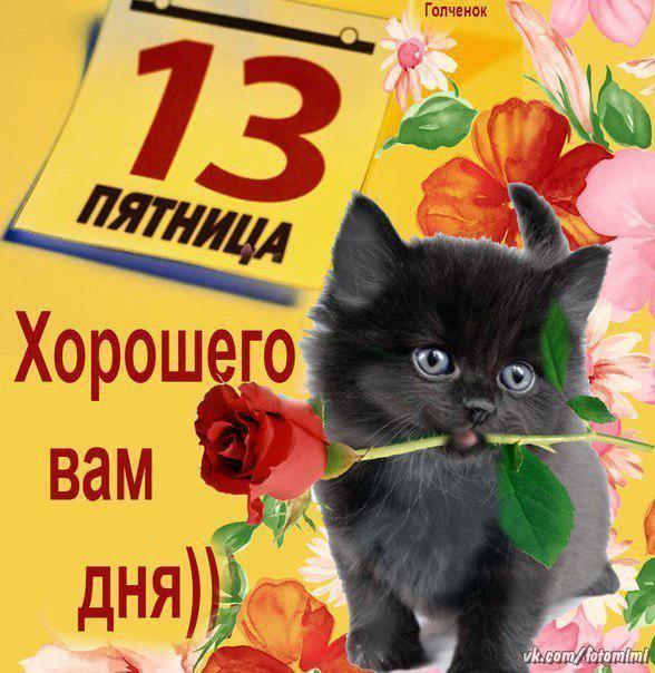 http://cs543104.vk.me/v543104782/1a7b5/TERc3Xzx6SU.jpg