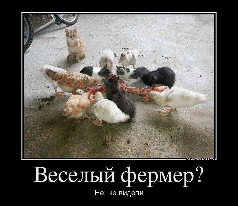 Может понадобиться русские щиты картинки думал, свой народ