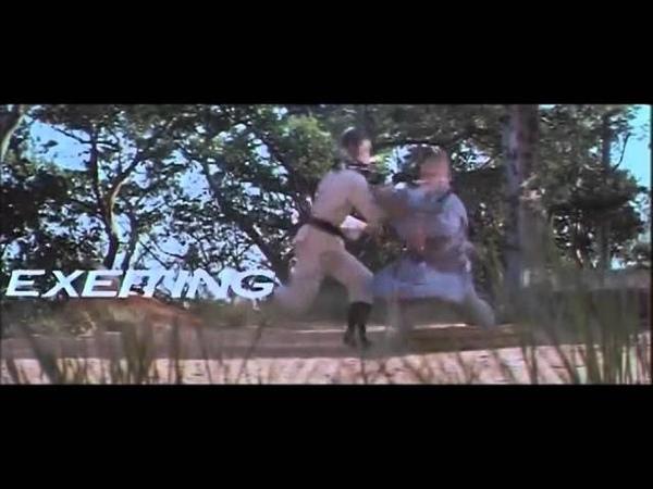 Shaolin Devil and Shaolin Angel 1978 trailer