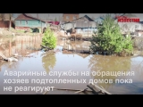 Жители подтопленной улицы Городской просят администрацию Курска о помощи