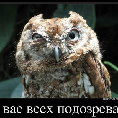 Вова Бабайцев, 18 августа , Донецк, id188020886