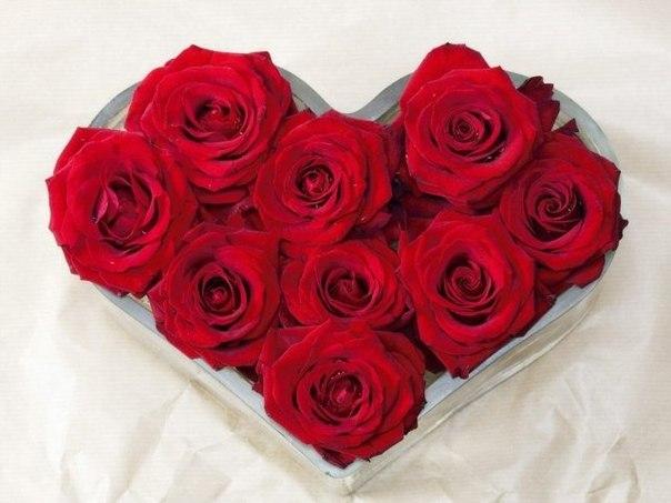 Сколько можно дарить девушке цветов