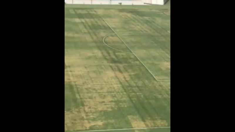 На стадіоні Чорноморець фарбують газон