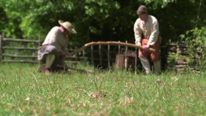 BBC «Ферма во времена Тюдоров» (2 серия) (Познавательный, история, исследования, 2013)