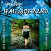 19.10 Wallace Band концерт и презентация клипа