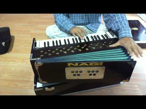 Double reed Portable harmonium, 3.5 Octave display