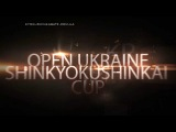 Promo Open Ukraine ShinKyokushinkai Cup 2013 (WKO ShinKyokushinkai) Eng.