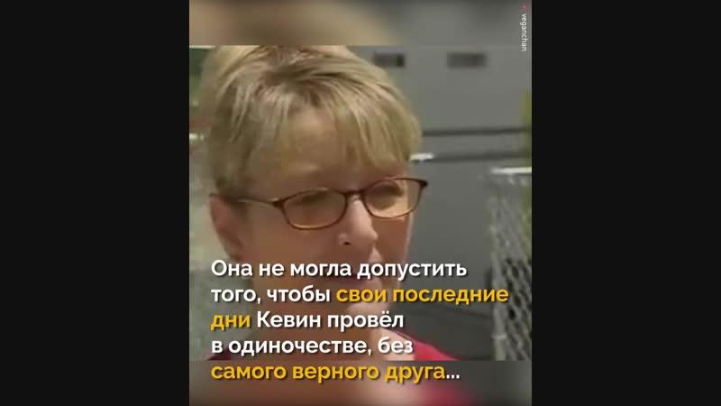 Бездомного, умирающего мужчину разлучили с единственным членом его семьи - когда фельдшер узнаёт, кто это, она берёт дело в свои
