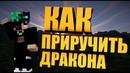 🔥КАК ПРИРУЧИТЬ ДРАКОНА В МАЙНКРАФТ МАЙНКРАФТ МОДЫ 1.12.2 🔥