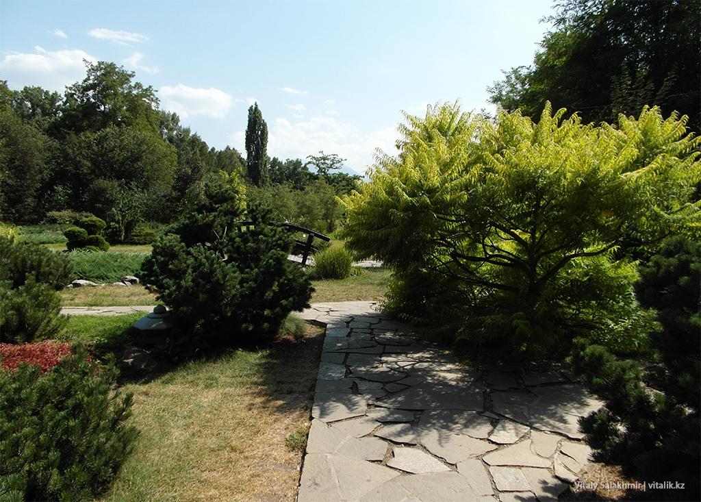 Обзор Японского сада, Ботанический сад Алматы 2018
