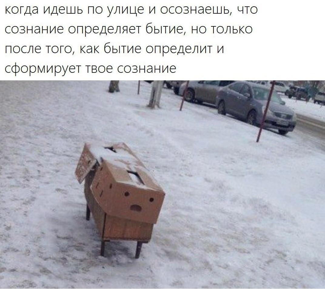 https://pp.userapi.com/c850436/v850436936/80745/PQHVGPK9j-4.jpg