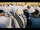 Еврейское счастье. 8 серия. Что есть еврей. Познер, Ургант