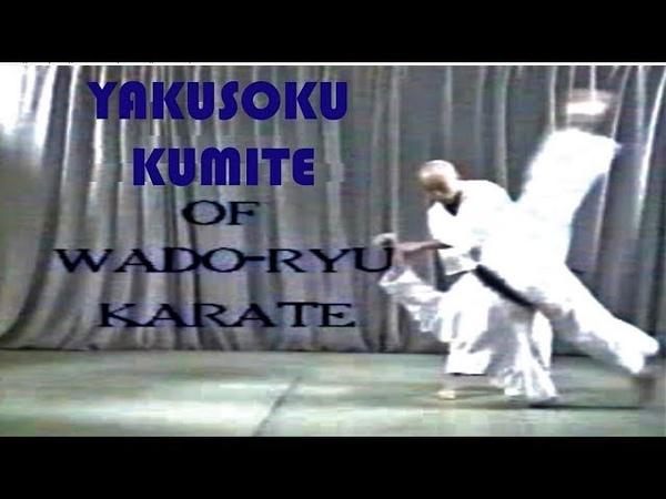 Kumite Wado - ryu Hanshi Tatsuo Suzuki 範士 鈴木達夫 和道流 組手