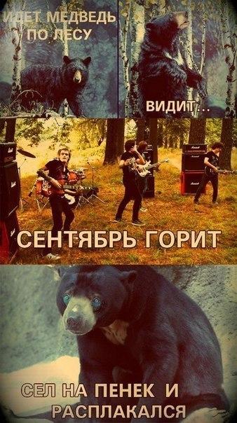 Фото №339809338 со страницы Александра Кадатского