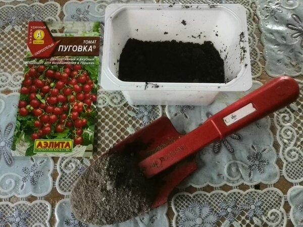 Что можно добавить в почву при посеве помидор на рассаду