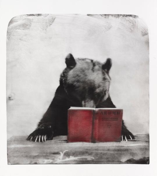 Фотограф Григорий Майофис. Автор парадоксальных коллажей и живописных полотен обратился к фотографии.