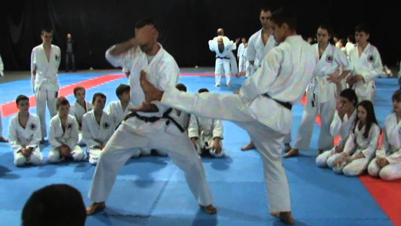 Мотоха Йошин рю Дзю Дзюцу. керикомі - кекомі дорі (Motoha Yoshin ryu Jiu Jitsu demonstration)