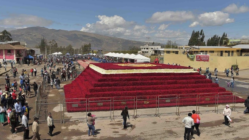 Ecuador looks to break a Guinness record with giant rose pyramid