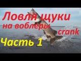 Ловля щуки на воблеры crank (кренк) Megabass Cyclone,проводка Алексей Шанин видео