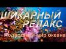 Очень красивая Релакс музыка Красота подводного мира