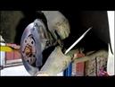 Замена передних тормозных колодок АУДИ Q7 2008 AUDI Q7 3,0 дизель