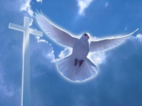 Zak NEWS щиро вітає своїх читачів з Водохрещем Христовим!