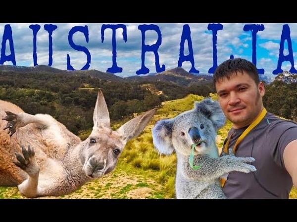 Одиночный поход по Австралийскому лесу