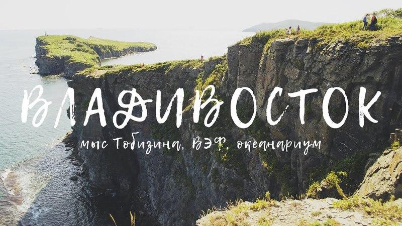 ВЛАДИВОСТОК 2017 мыс Тобизина, ВЭФ, океанариум