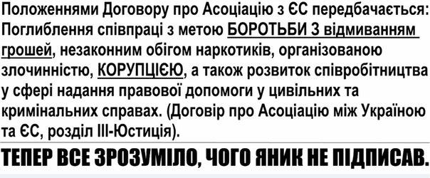 Власть будет пытаться возложить ответственность за кризис в стране на Евромайдан, - оппозиция - Цензор.НЕТ 7561