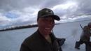 2 часть Охота на утку турпан в Якутии Duck hunting of Yakutia Russia