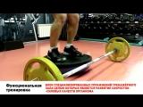 Функциональная тренировка ZEBRA FITNESS