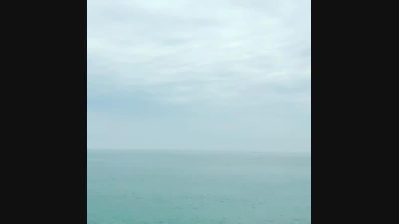 """岡田 直人 on Instagram: """"昨日は季の雲さんの 15周年記念の会へ参加。 朝の帰り道 海が凪いでいたので 立ち寄り深呼吸。"""""""