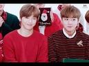 [강다니엘 박지훈/워너원] 이니스프리 그린 크리스마스 인터뷰 - 장꾸즈 CUT (Daniel J