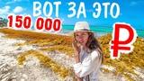 Доминикана 2018. Горы мусора на пляжах Баваро. Все включено, отель 3 звезды