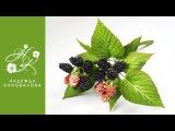 Как сделать ягоды ежевики