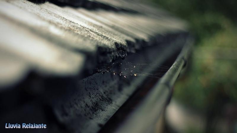 Sonido de Lluvia en techo de zinc, ruido de lluvia en techo de chapa,12 horas para dormir