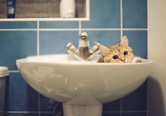 Уже скоро жители Днепра останутся без воды (ПОДРОБНОСТИ)