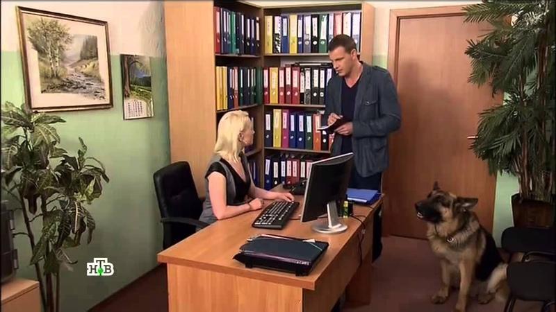 Возвращение Мухтара-2. 9 сезон 88 серия Испорченный обед