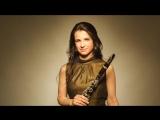 Carl Maria von Weber_ clarinet concerto No. 1 in F minor Op. 73