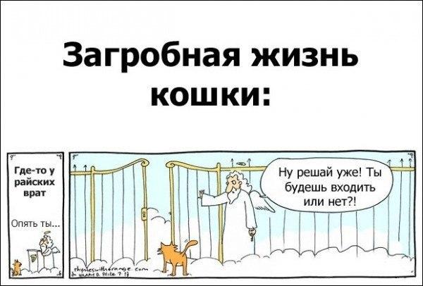 http://cs406230.userapi.com/v406230025/ee1/EAbGv7UDvvI.jpg