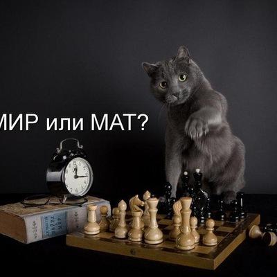 Никита Торжминов, 8 апреля 1985, Санкт-Петербург, id224286785