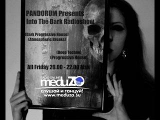 Into The Dark - by PANDORUM - Guest Mix Dj Vasus |Nigt Light Pt.2| (meduZO.FM)