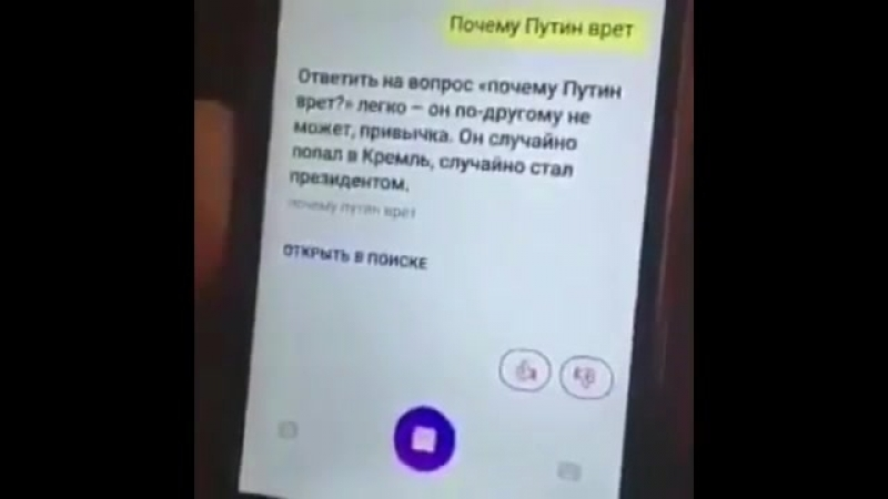 Искусственный Интеллект Яндекса Алиса говорит правду