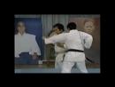 Goshi Yamaguchi demonstrates various techniques from Goju Ryu kata