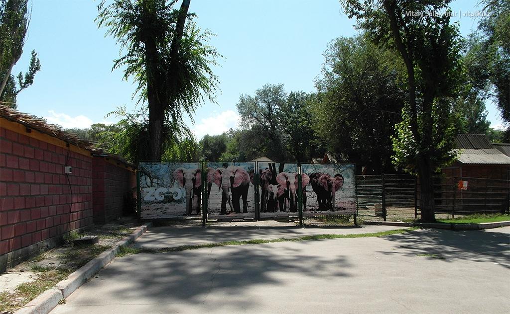 Забор внутри зоопарка Алматы 2018