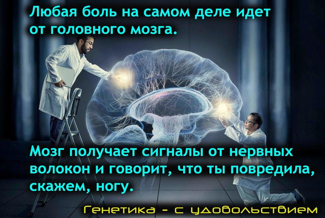 https://pp.userapi.com/c824203/v824203662/e1e13/xoPeK9usJ8Q.jpg