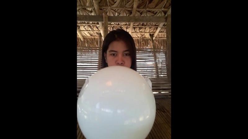 Girl blowing a big white balloon till it pops cute reaction