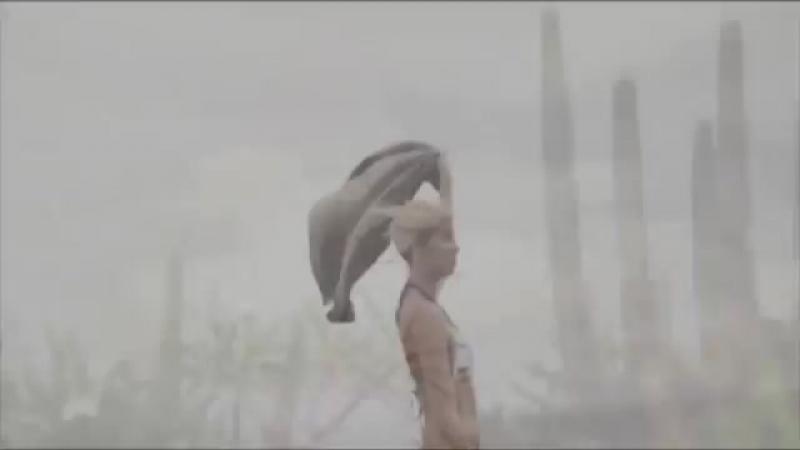 красивый клип хорошая музыка  клип от (золотой)