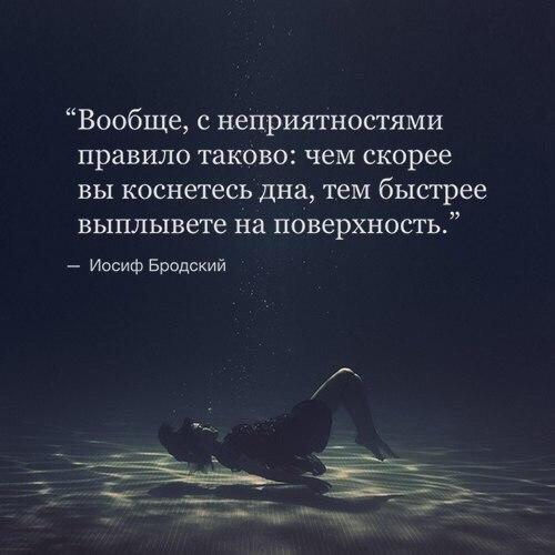https://pp.vk.me/c7002/v7002006/25b18/onl5yFc3aKQ.jpg