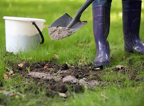 Любой садовод знает: чтобы получить хороший урожай, растения нужно вдоволь кормить. Но чем